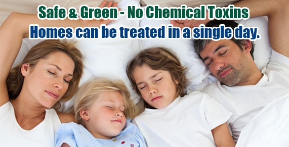 Chemical Free Bed Bug Treatment Manhattan, Get Rid of Bed Bugs Manhattan, Bed Bug Spray Manhattan