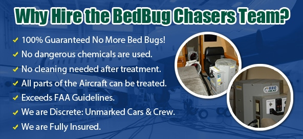 Bed Bug pictures Manhattan, Bed Bug treatment Manhattan, Bed Bug heat Manhattan