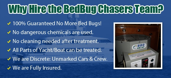 Bed Bug Pictures Manhattan, Chemical Free Bed Bug Treatment Manhattan, Get Rid of Bed Bugs Manhattan, Bed Bug Spray Manhattan, What to do Bed Bugs look like Manhattan, Kill Bed Bugs Manhattan, Bed Bug Treatment Manhattan, Bed Bug Dog Manhattan, How to get Rid of Bed Bugs Manhattan, Bed Bug Heat Treatment Manhattan, Bed Bug Eggs Manhattan, Bed Bug Exterminator Manhattan, Bed Bug Images Manhattan, Bed Bug Inspection Manhattan, Bed Bug Bites NYC, Bed Bug Pictures NYC, Chemical Free Bed Bug Treatment NYC, Get Rid of Bed Bugs NYC, Bed Bug Spray NYC, What to do Bed Bugs look like NYC, Kill Bed Bugs NYC, Bed Bug Treatment NYC